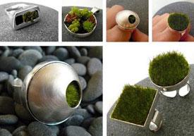 Eco Jewellery-Jewellery Goes Eco-Friendly With Living Jewellery!